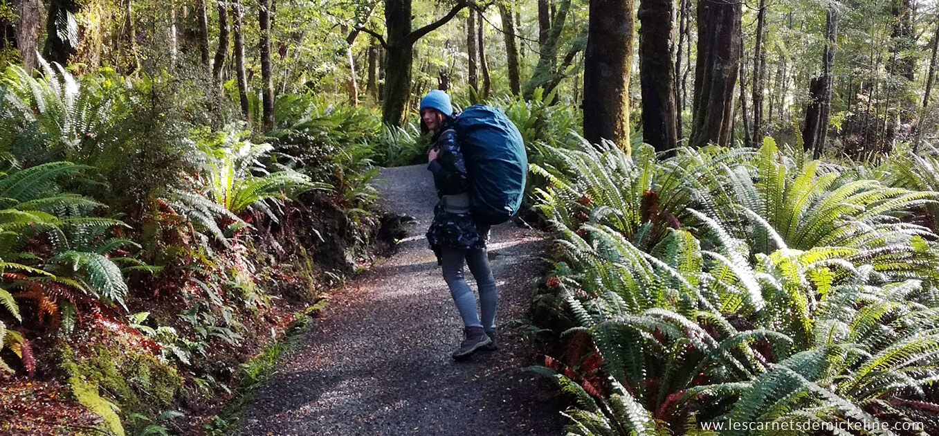 imageFIN - My 10 favorite treks on the south Island in New-Zealand